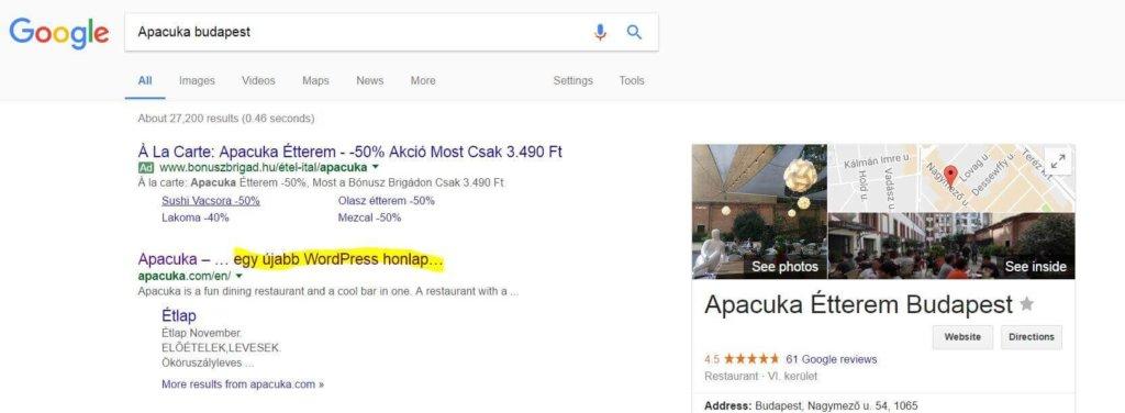 SEO szakértő szemléltető ábra az Apacuka találatáról